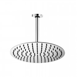 Twiggy stainless steel shower head with shower arm H31581G