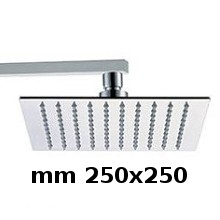Wall shower head 250x250 with arm